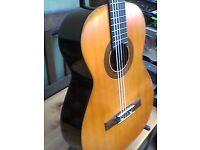 Congress Japan Classical Guitar.