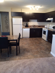 Regina - Furnished 2bdrm includes everything available now