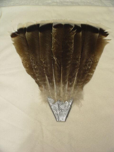 Black Spaniard Royal Palm Turkey Seven Feather Tail Fan Set  w/ holder  #BF40