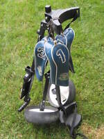 Golf Carts Used (2) with Driver covers