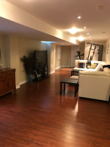1 bedroom furnished basement apartment