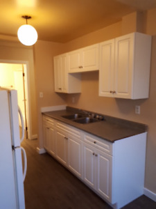 1 Bedroom apartment for rent, west Quesnel.