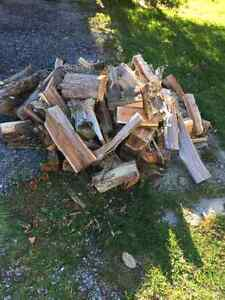 Cut and split cedar firewood