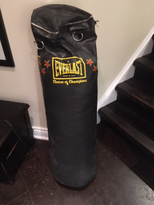 Everlast punching bag, 70lb (just weight it)