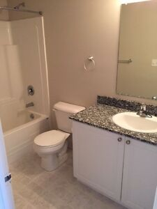 SPACIOUS SUITES IN WATERLOO! READY NOW! Kitchener / Waterloo Kitchener Area image 5