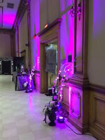 Professional Windsor Wedding DJ ServicesLighting Special Effects