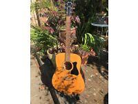 Ibanez J50 acoustic guitar