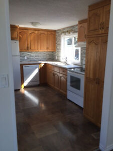 LEASE TO PURCHASE: Newly Renovated Mobile Home, Millet, AB