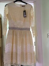 Laced in Love occasion dress, Size 10, Cream/pale yellow