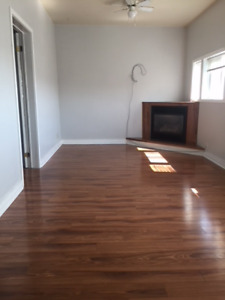 One bedroom apartment in Fergus
