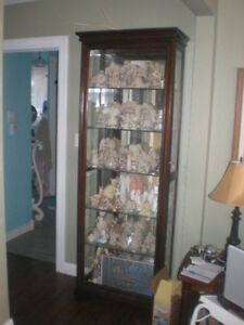 Looking To Buy Display Cabinet