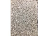 Stainfree Junior Shingle New Carpet Ab 8.36m x 4.00m Free Local Delivery