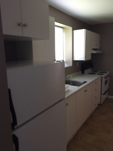 FOR SALE:     Kitchen cabinets; countertop; fridge and stove