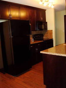 Free Rent with 6 Month Lease!!! Apartment for rent in Hinton Edmonton Edmonton Area image 11