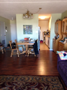 Roberts Plaza, 2 bedroom condo for Rent.  Available May 1 or 15