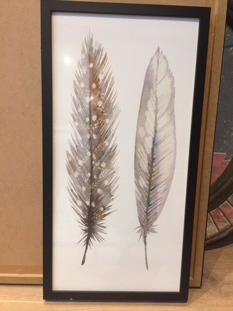 Framed feathers print