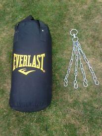 Junior Everlast Punch Bag