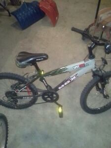 "Mongoose 20"" camo bike"
