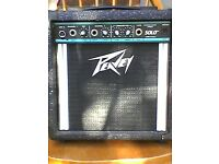 Busking Amp,Peavey Solo,batteries or mains 2 channel