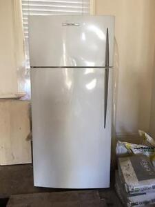 Fisher & Paykel E521TLE 517 Litre Refrigerator Paddington Eastern Suburbs Preview