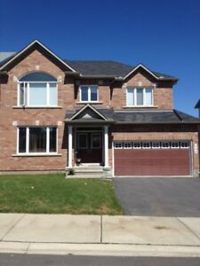 409 Abbeydale Circle - Single Family Home House for Rent