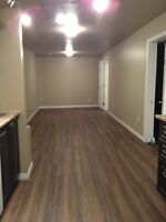 Newly reonovated 2 bedroom basement suite