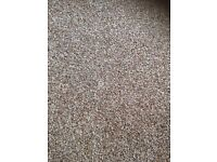 New carpet 2.5m x 2.6m polypropylene twist 20 year stain resist suitable for all areas