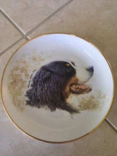 Bernese Mountain Dog collectable plate