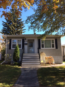 129Ave 71St Bright 1 Bdrm Bsmt with Parking