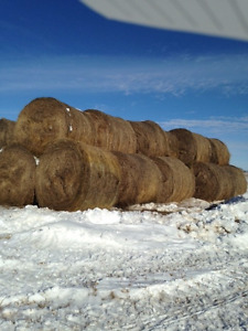 Round Bales For Sale $40 Each