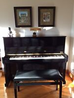 Piano/Theory/Vocal Lessons in Riverview