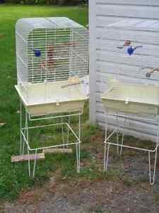 Une seule cage d'oiseaux