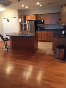 Downtown 2bdrm/2bath furnished condo for rent