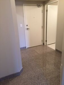 SPACIOUS SUITES IN WATERLOO! READY NOW! Kitchener / Waterloo Kitchener Area image 3