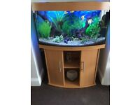 Fish tank, Juwel Vision 180 and stand complete with heater, filter, gravel tank décor and plants