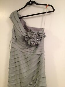 Absolutely Beautiful Light Grey Gown for Sale