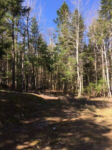Vacant Land - Lower Coverdale (MLS M104973)