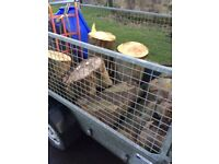 Trees and branches removed from gardens for free also mobile log splitting services