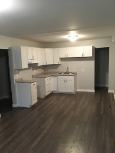 Napanee 2 bdrm available now