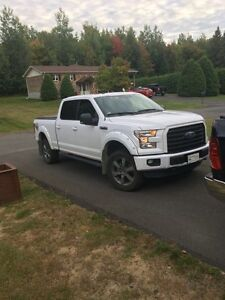 2016 Ford F150 SuperCrew Camionnette