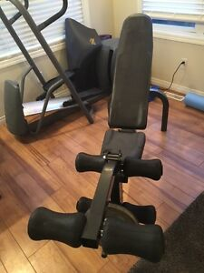 Northern Lights Weight Bench with Leg Curl attachment
