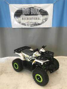 Go Kart | Find New ATVs & Quads for Sale Near Me in Canada