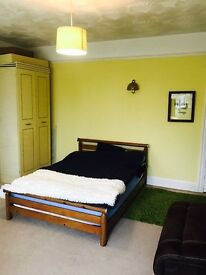 *** HUGE double room, 2 warddrobes, sofa, entrance to POOLE PARK ***