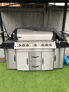 Napolean  Natural Gas BBQ In Mint Condition