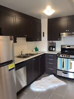 Beautifully renovated studio apartment in Nepean for January!!