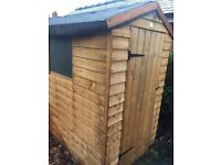 Shed for sale ( only two months Old)