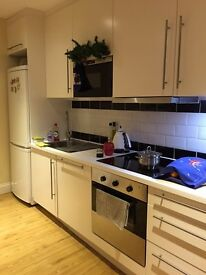 Modern 1 bedroom flat: water and wifi included