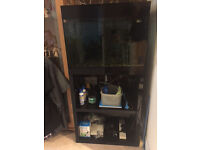 Askoll 70 Litre (22'' long x 14'' wide x 14'' deep) Aquarium with 4 Stage Filtration System & Extras