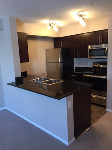 1st Month $600 - Rutherford  Area -- 2 Bedroom -- Avail now!