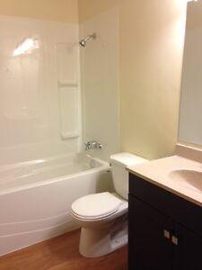 2 Bedroom -  - Louise Apartments - Apartment for Rent Edmonton Edmonton Edmonton Area image 7